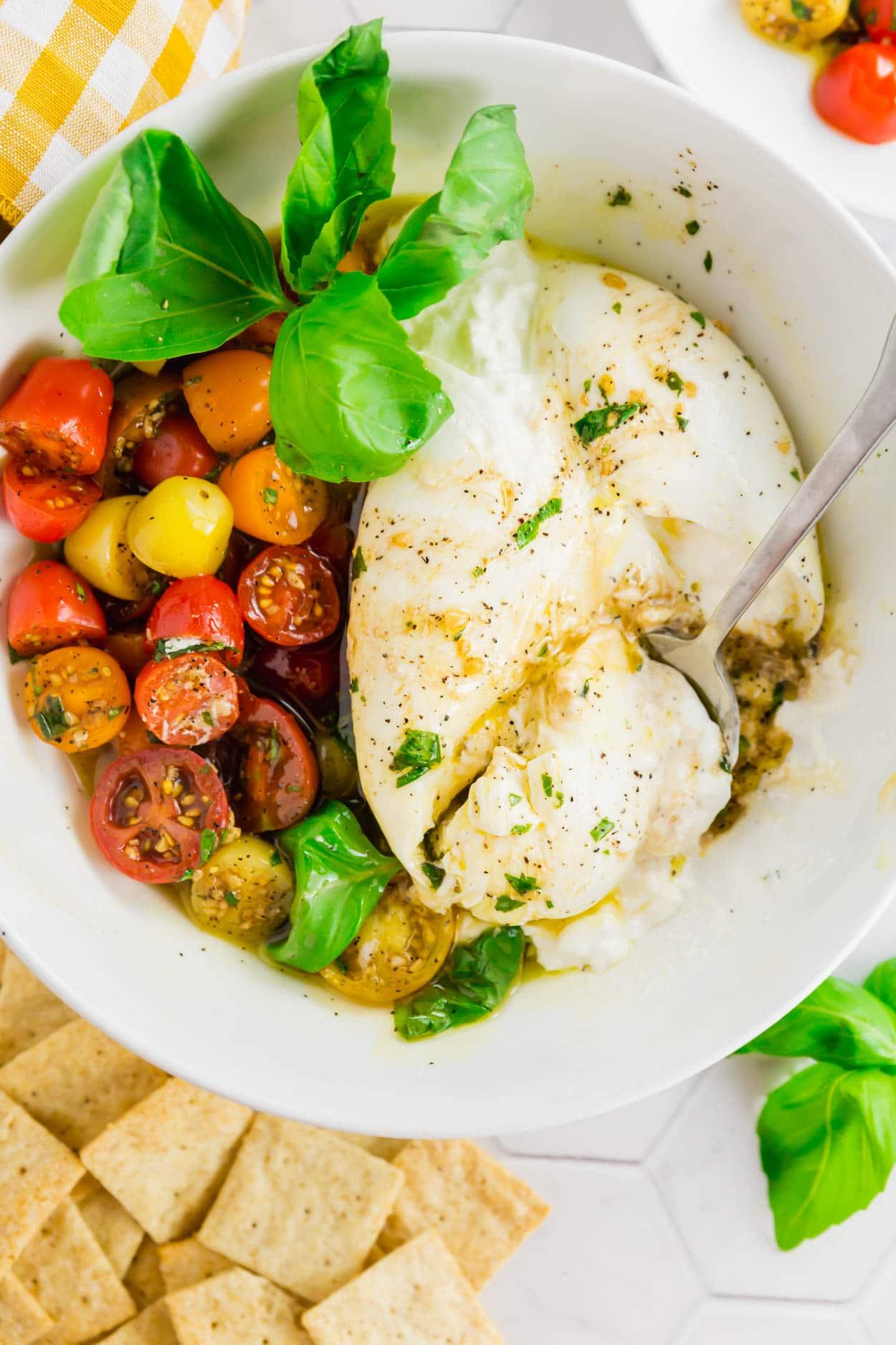 21+ Marinated Tomato and Burrata Appetizer   A Dash of Megnut Image